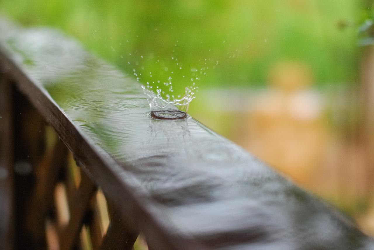 梅雨真っただ中です